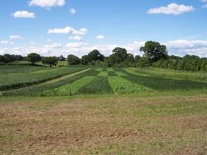 Landnutzungssystemen